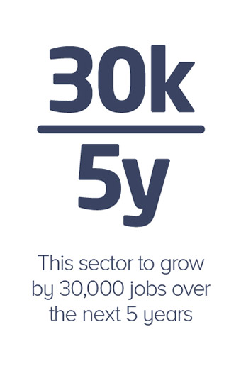 This sector to grow by 30,000 jobs over the next 5 years
